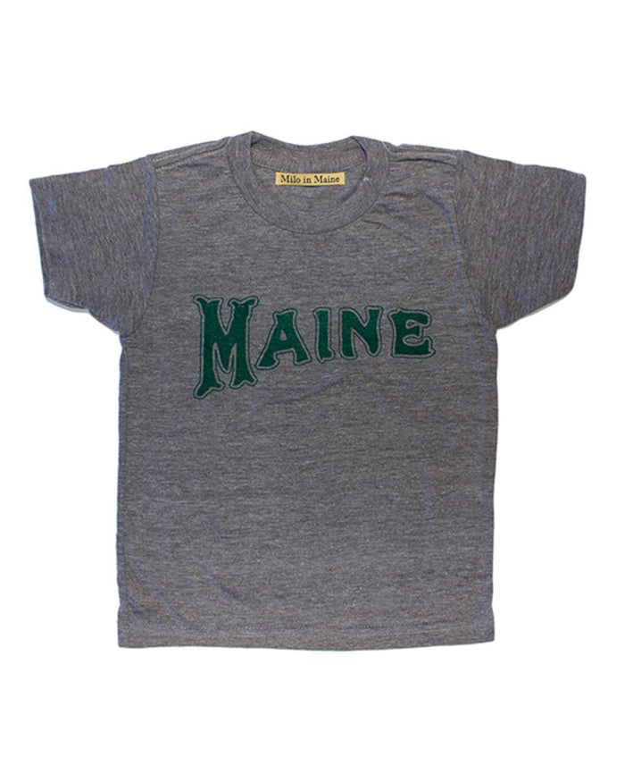 Little milo in maine baby boy 3-6 maine baby tee in grey + green