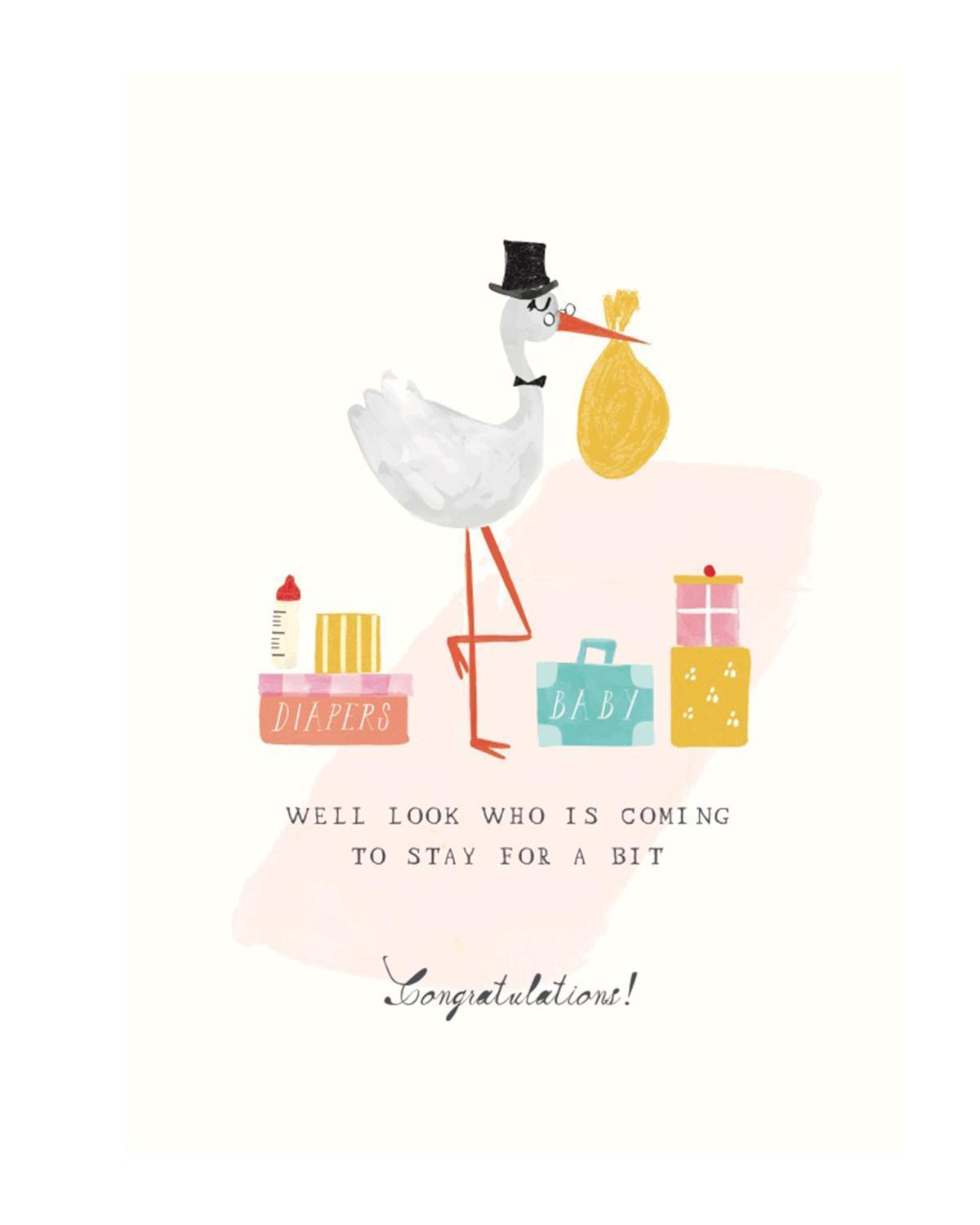Little mr. boddington's studio paper+party stork's suitcases card