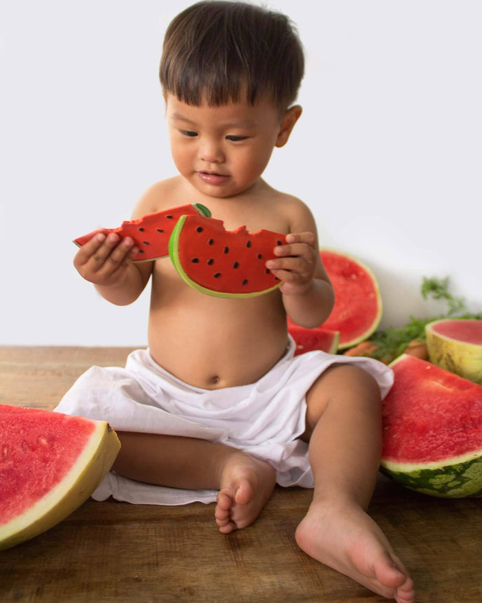 Little oli + carol baby accessories wally the watermelon