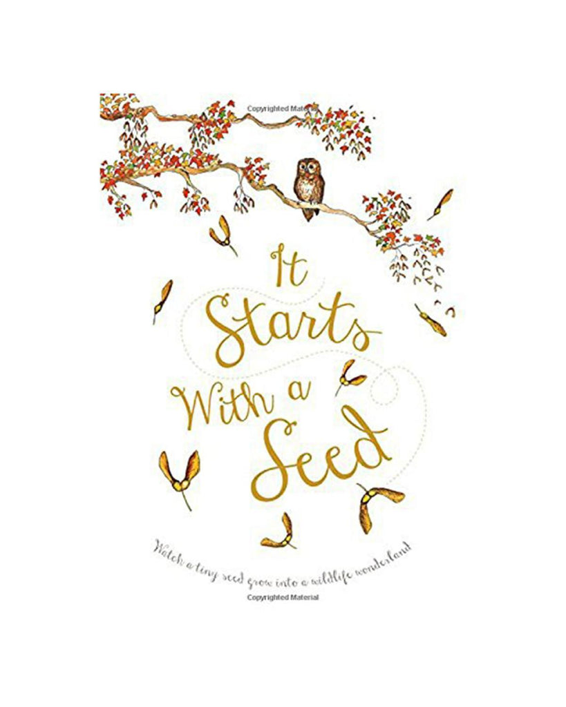Little quarto publishing group play it starts with a seed