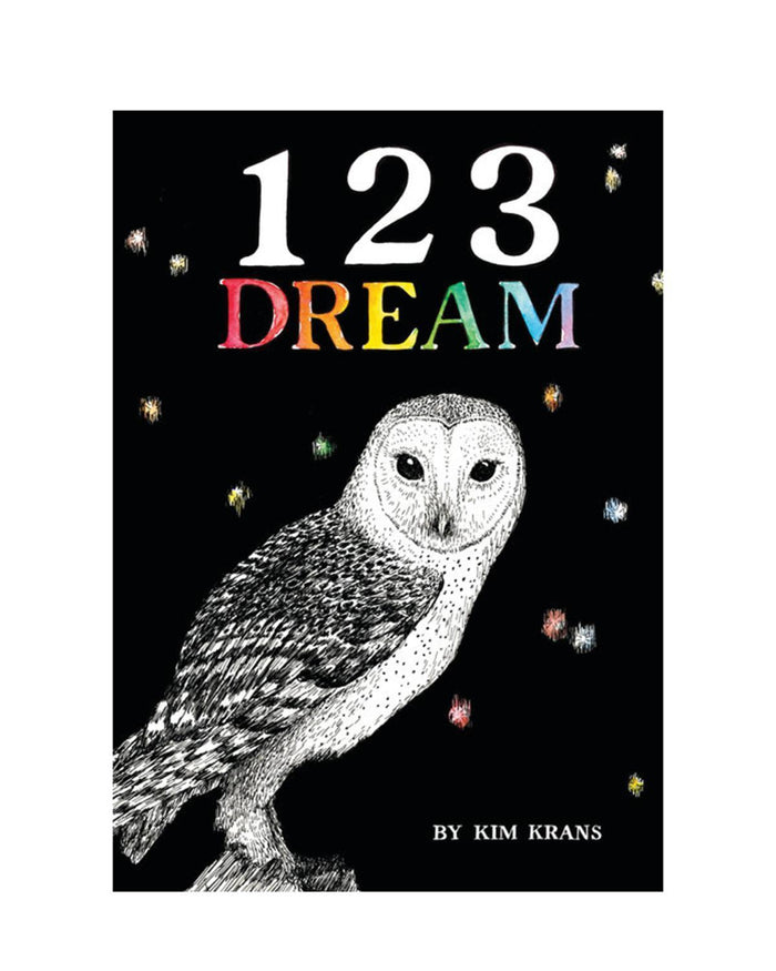 Little random house play 123 Dream