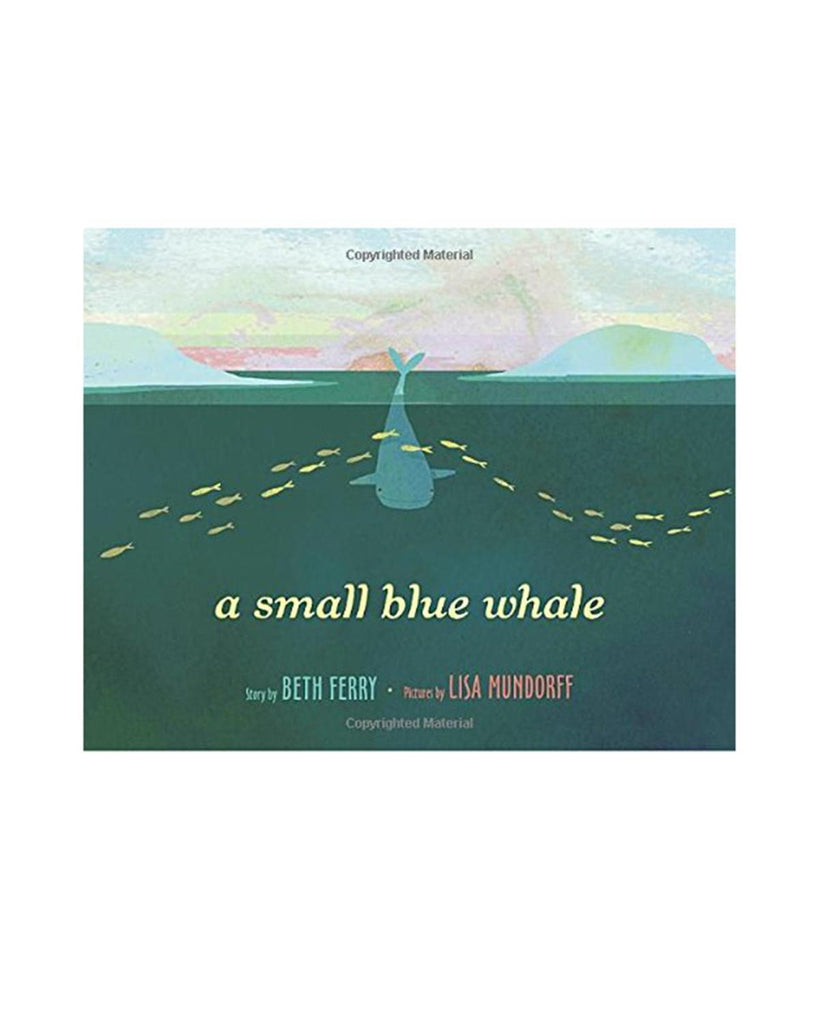 Little random house play A Small Blue Whale
