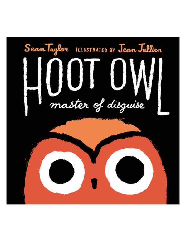 Little random house play Hoot Owl, Master of Disguise
