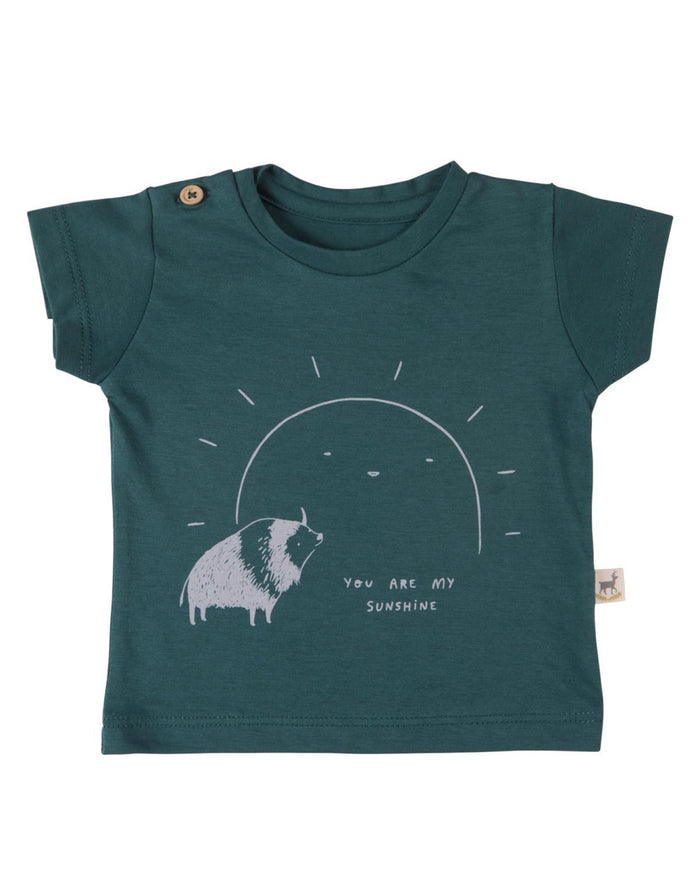 Little red caribou boy 2 my sunshine t-shirt