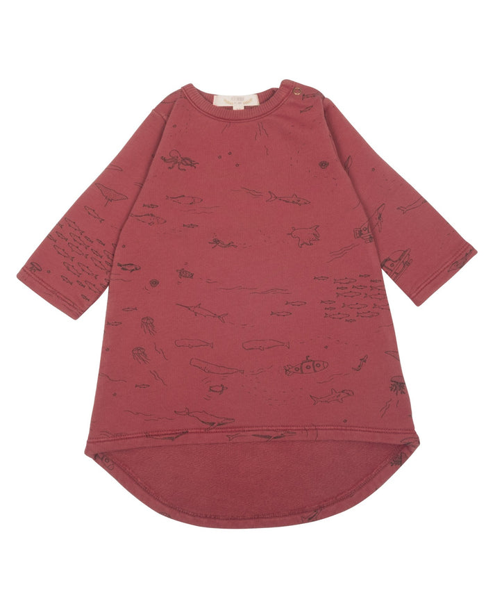 Little red caribou baby girl the story french terry dress in rosewood