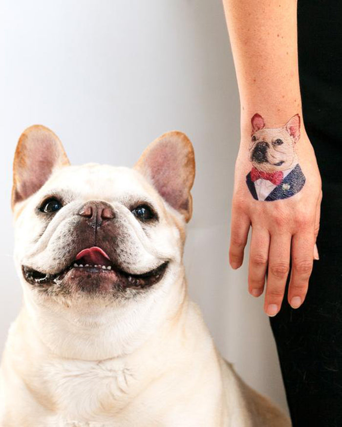 Little tattly paper+party french bulldog tattoo