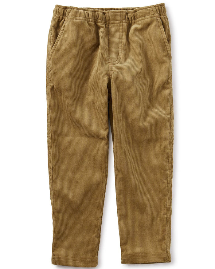 Little tea collection boy corduroy pant