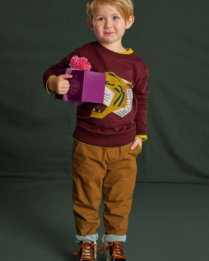 Little tea collection boy embroidered tiger pullover