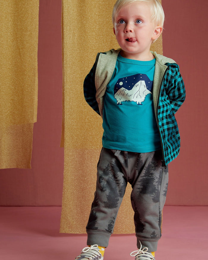 Little tea collection boy forest fleece joggers