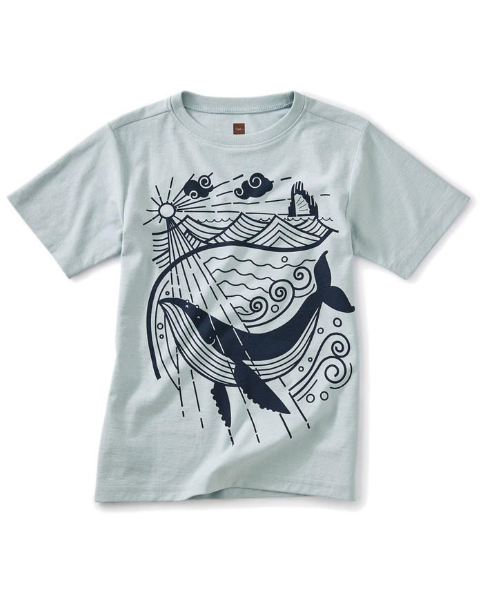 Little tea collection boy 10 junk ship graphic tee