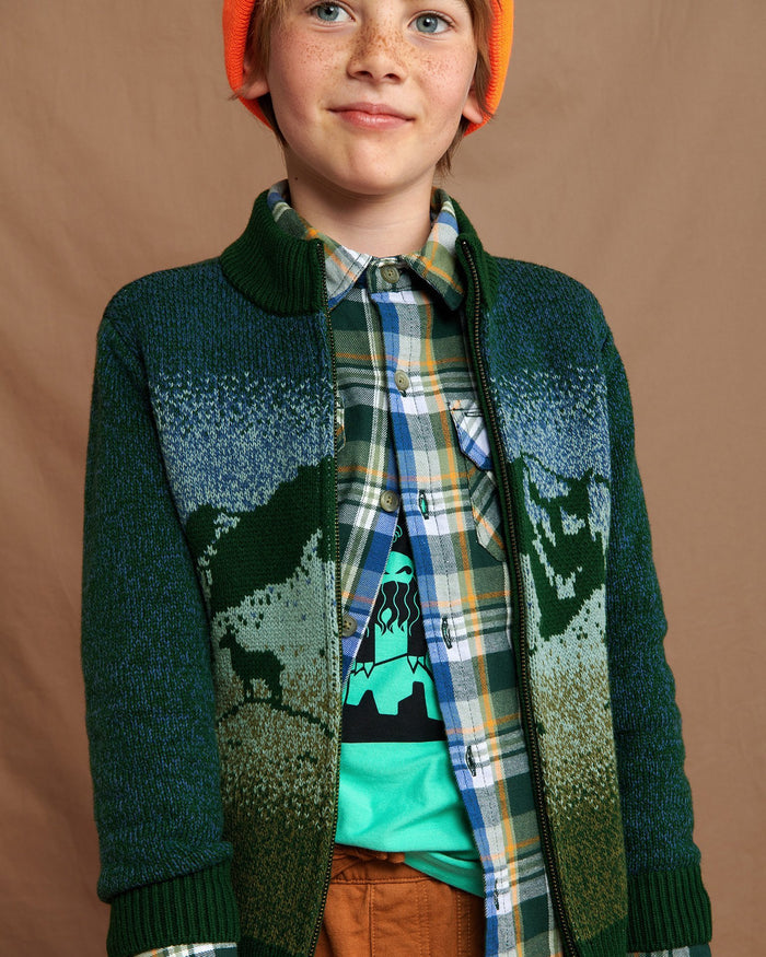 Little tea collection boy mountaineer zip cardigan