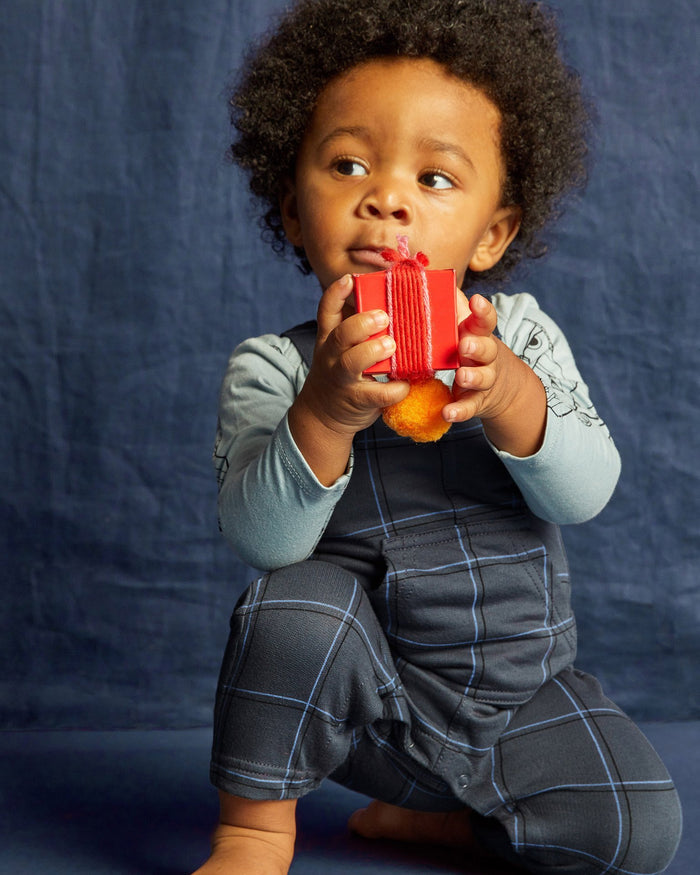 Little tea collection baby boy plaid baby overalls in double windowpane