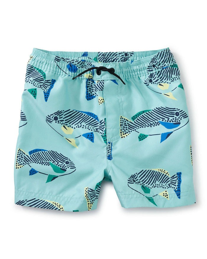 Little tea collection boy shortie swim trunk in coastal fish