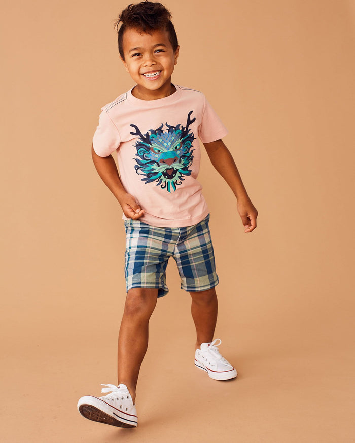 Little tea collection boy 10 viet dragon graphic tee