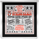 Ernie Ball 5 String Banjo Custom Gauge String Set (Loop End)