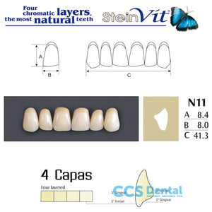 dientes NEW STETIC, dientes steinvit n11 up