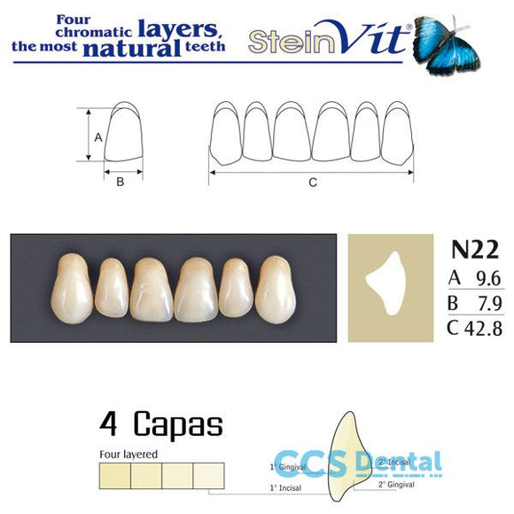 dientes NEW STETIC, dientes steinvit n22 up