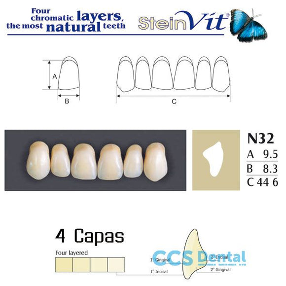 dientes NEW STETIC, dientes steinvit n32 up