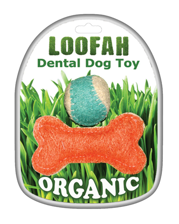 Organic Vegetable Dental Toy Playtime Set