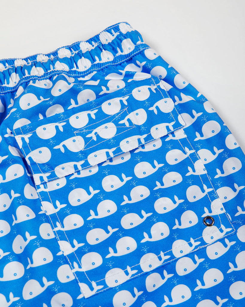 COCOI men swimshort whales swimming trunk family
