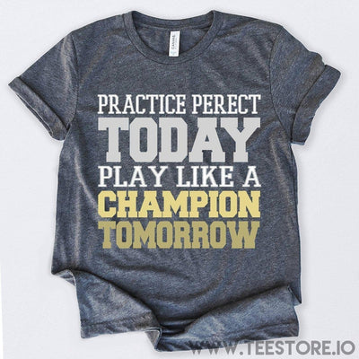 www.teestore.io-Practice Perfect Today Play Like A Champion Tomorrow Tshirt Funny Sarcastic Humor Comical Tee | TeeStore.io