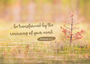 Benefits of the Renewed Mind