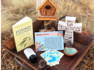 New Matthew 6:25-26 Bird Box!