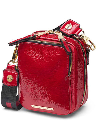 Camera Crossbody Bag in Red/Gold