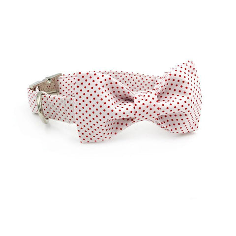 Red Poky Dots Bow Tie and Collar