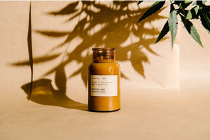 'Hinterland' // Evergreen Bamboo Candle - 250ml
