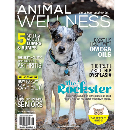 SpotOn Featured in Animal Wellness Magazine