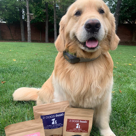 Labor Day Giveaway! Win a SpotOn Virtual Fence & Six Months of 2 Dogs Treats!