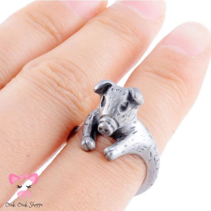 Modish Wrap Around Snout Ring