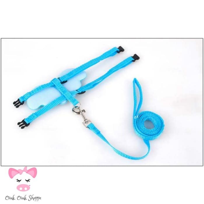 Piggy Wings Harness and Leash Set