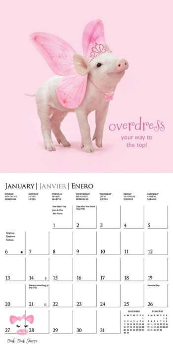 Pretty In Pink 2019 Mini Calendar - Amz