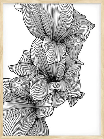 Abstract-Gladiolus-Botanical-print-with-minimalist-design
