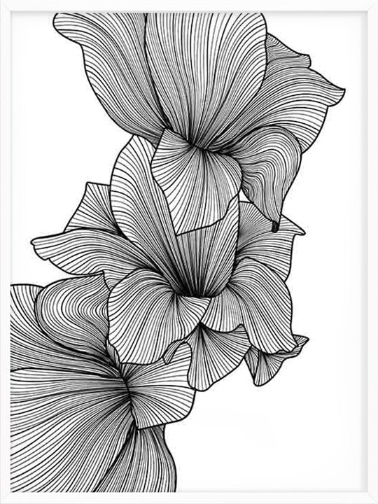 Abstract Gladiolus - Poster