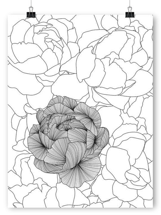 Abstract Peonies - Poster