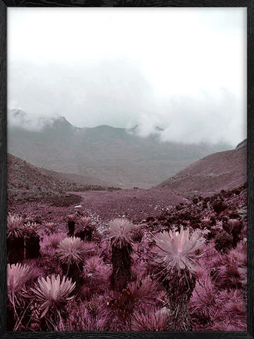 Alpine Landscape photography nature print
