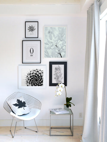 Aralia-leaf-Black-&-White-Botanical-Print