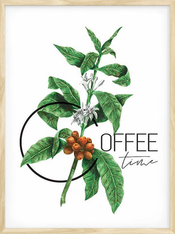 Coffee-Time-Botanical-Poster-affiche