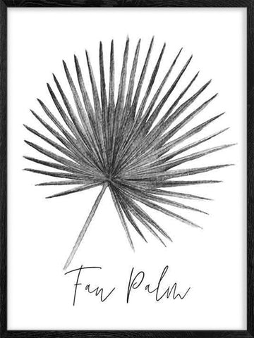 Fan-Palm-Black-and-White-Watercolor-Print