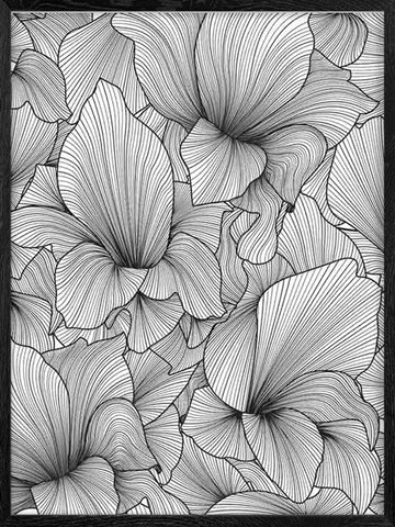 Gladiolus-Monochrome-Abstract-Floral-Art-Print