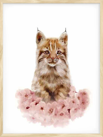 Little-Lynx-kids-Nordic-style-animal-illustration-poster