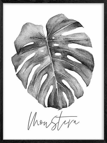 Monstera-Plant-Watercolour-Black-and-White-Print-Affiche