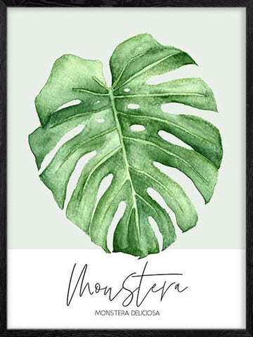 Monstera-Plant-Watercolor-Scandinavian-style-poster