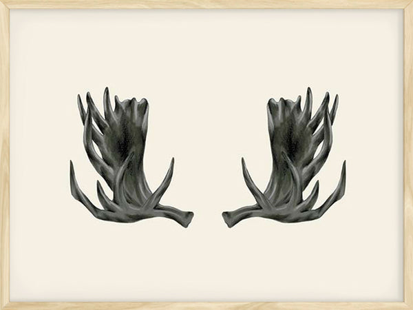 Moose Antlers -Cream - Poster