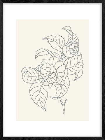 Camellia-Simple-Art-Print-Posterwol