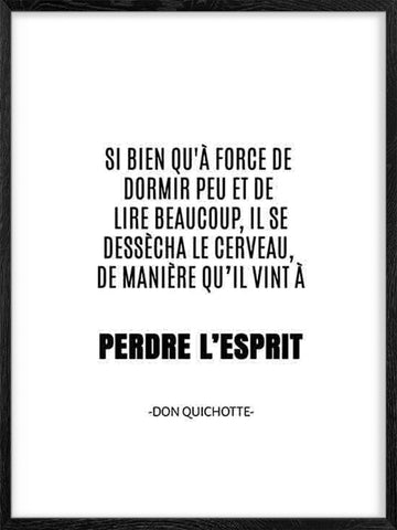Perdre-L'Esprit-Don-Quichotte-affiche-quote-poster-with-frame