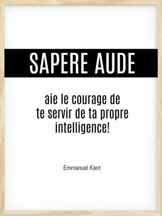 Sapere Aude - French - Poster
